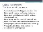 capital punishment the american experience2