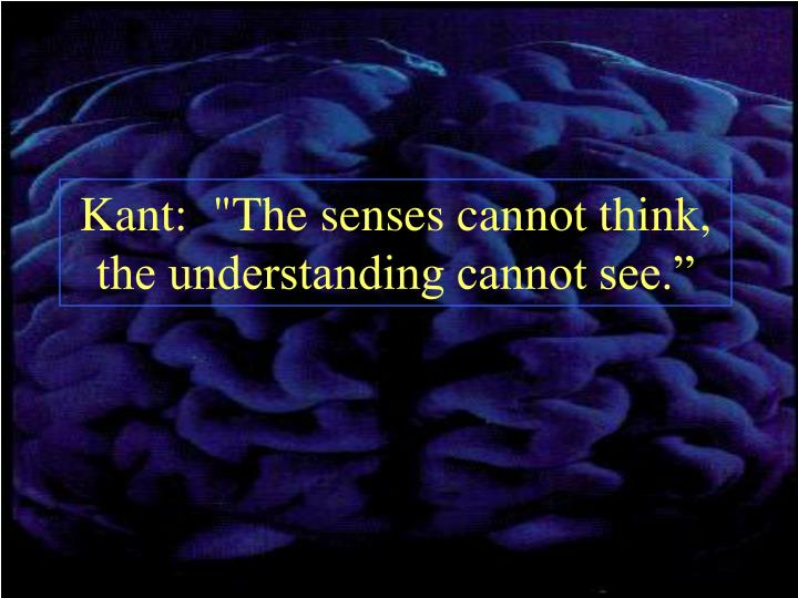 """Kant:  """"The senses cannot think,  the understanding cannot see."""""""