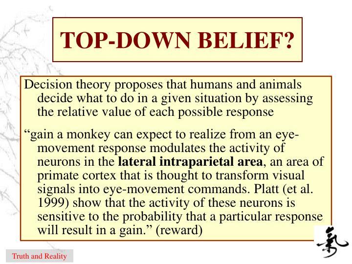 TOP-DOWN BELIEF?