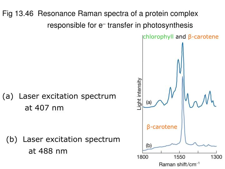 Fig 13.46  Resonance Raman spectra of a protein complex