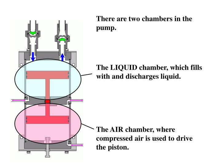 There are two chambers in the pump.