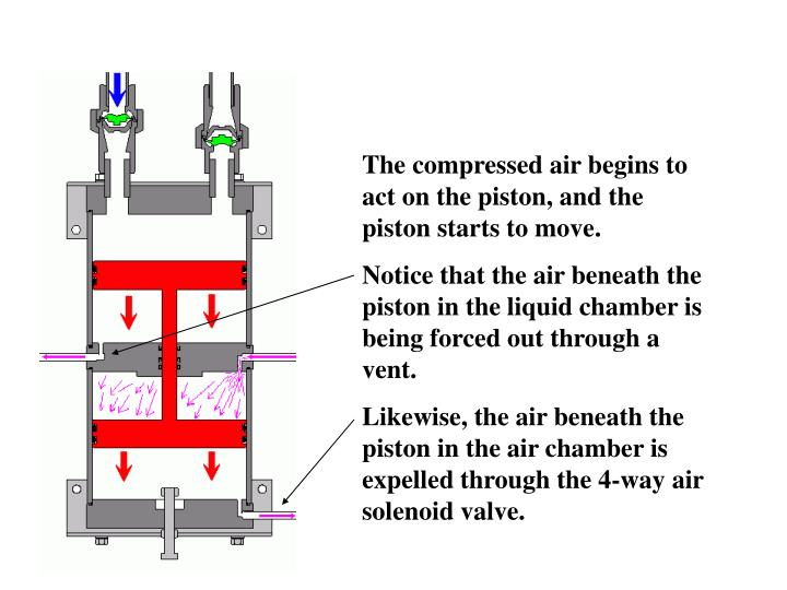 The compressed air begins to act on the piston, and the piston starts to move.