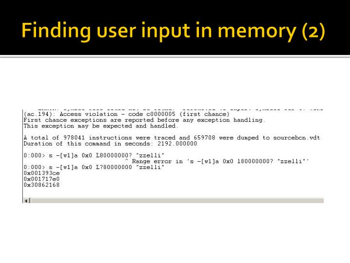Finding user input in memory (2)