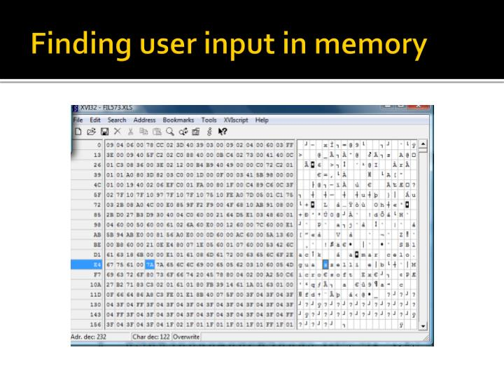 Finding user input in memory