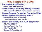why vectors for iram