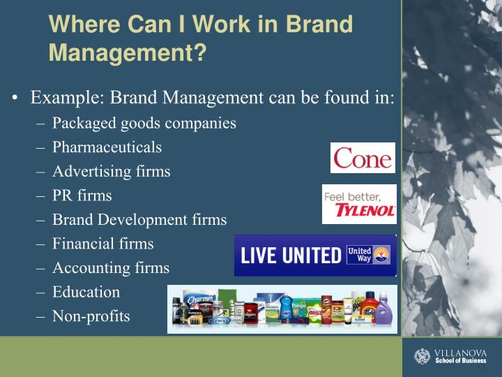 Example: Brand Management can be found in: