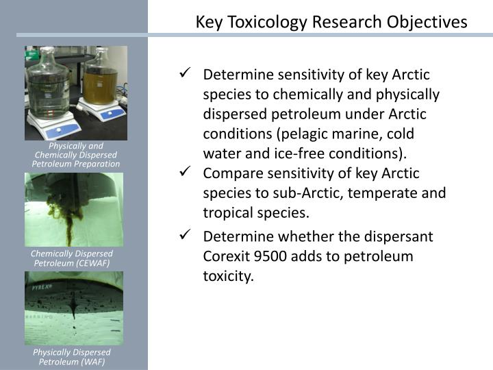 Key Toxicology Research Objectives