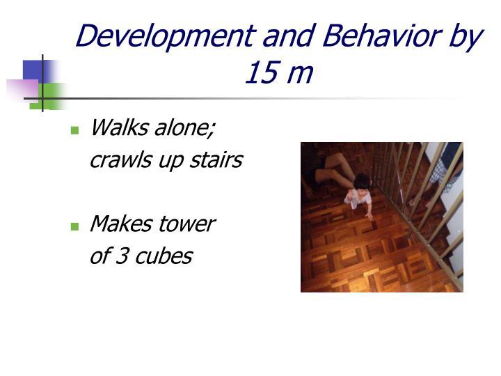 Development and Behavior by 15 m