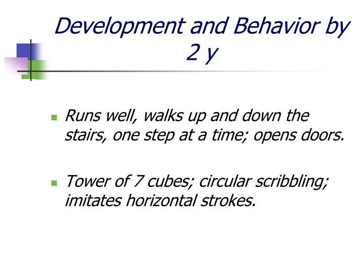 Development and Behavior by 2 y