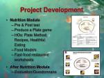 project development3