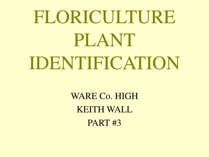 floriculture plant identification n.