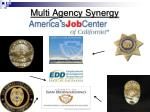 multi agency synergy