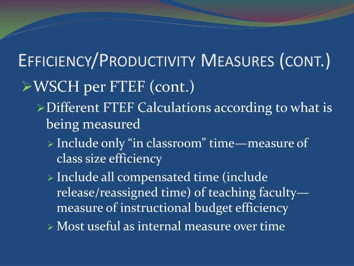 Efficiency/Productivity Measures (cont.)