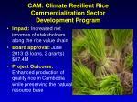 cam climate resilient rice commercialization sector development program