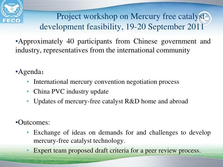 Project workshop on Mercury free catalyst development feasibility