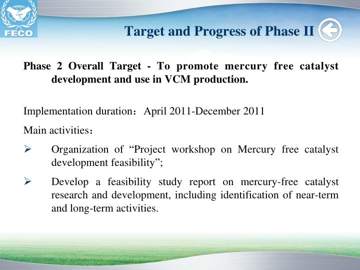 Target and Progress of Phase