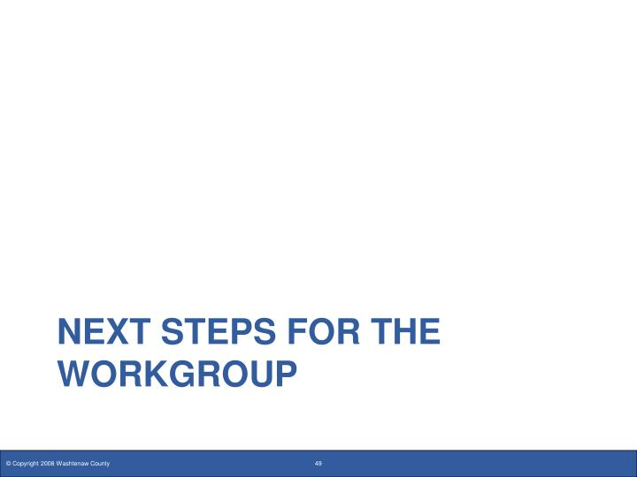 NEXT STEPS FOR THE WORKGROUP