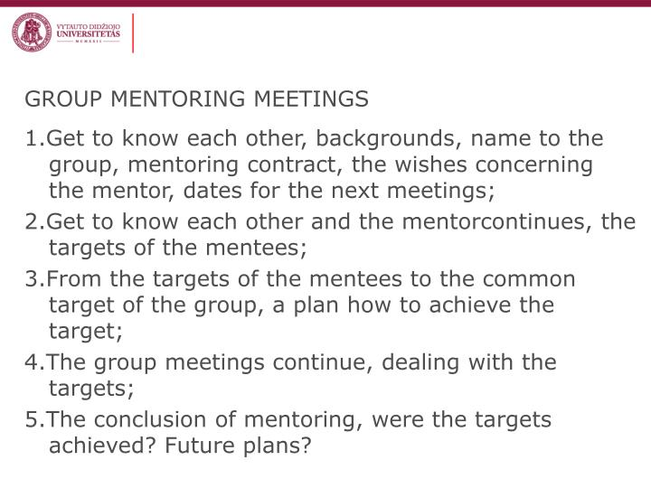 GROUP MENTORING MEETINGS