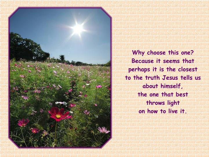 Why choose this one? Because it seems that perhaps it is the closest to the truth Jesus tells us about himself,