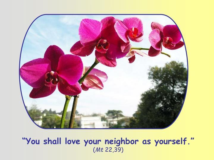 """You shall love your neighbor as yourself."""