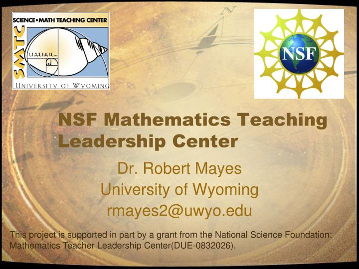 Nsf mathematics teaching leadership center