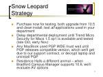 snow leopard strategy