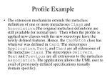 profile example1
