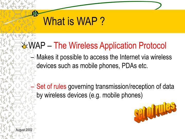 What is wap