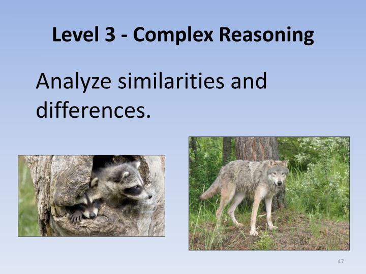 Level 3 - Complex Reasoning