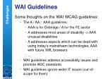 wai guidelines