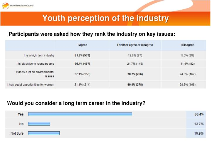 Youth perception of the industry
