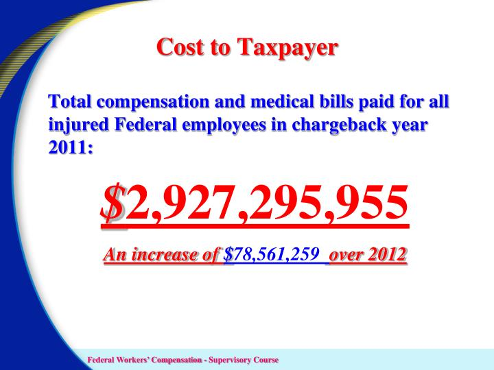 Cost to Taxpayer