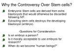 why the controversy over stem cells