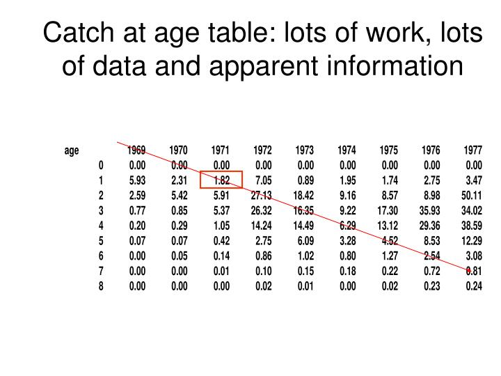 catch at age table lots of work lots of data and apparent information n.