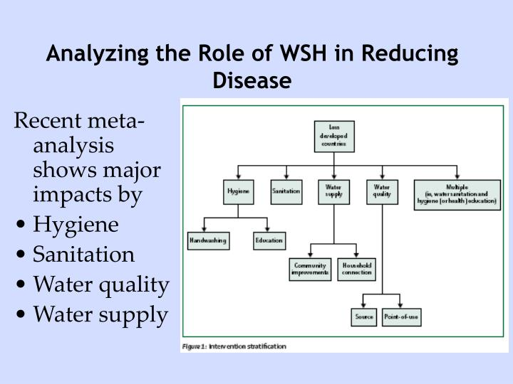 Analyzing the Role of WSH in Reducing Disease