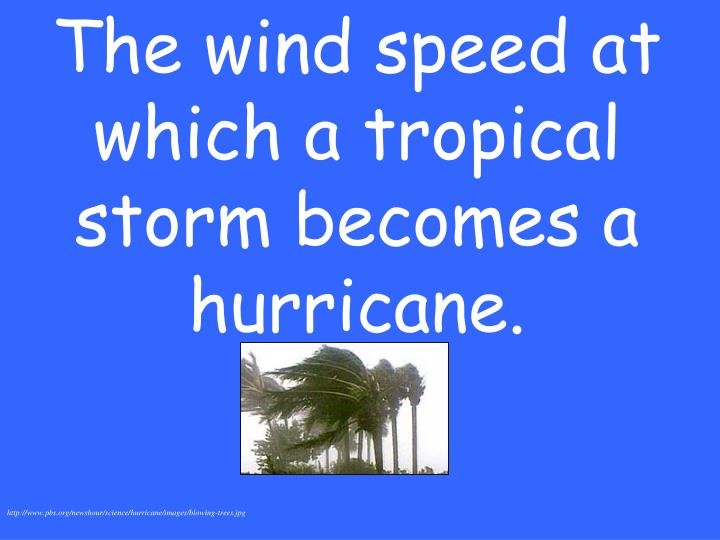 The wind speed at which a tropical storm becomes a hurricane.