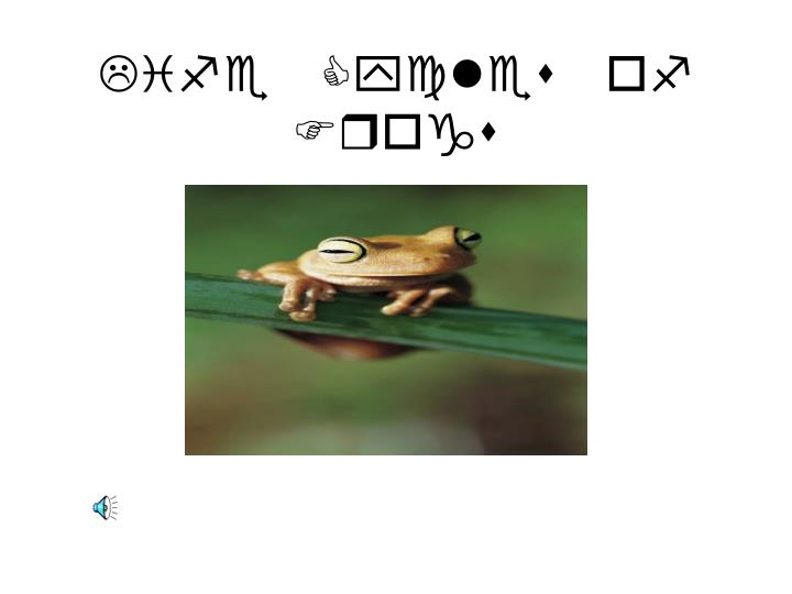 life cycles of frogs n.