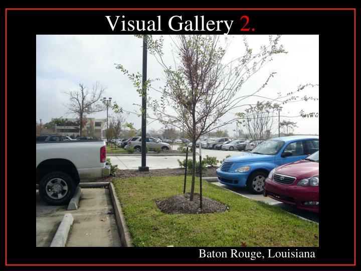 Visual Gallery