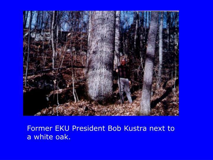 Former EKU President Bob Kustra next to a white oak.