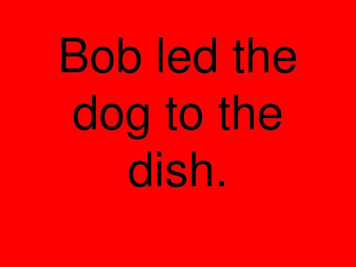 Bob led the dog to the dish.