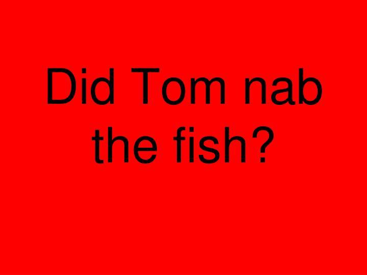 Did Tom nab the fish?