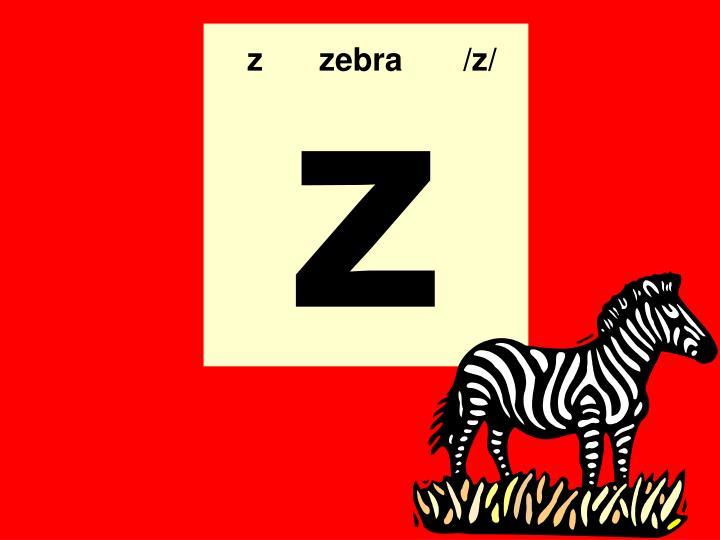 zzebra/z/