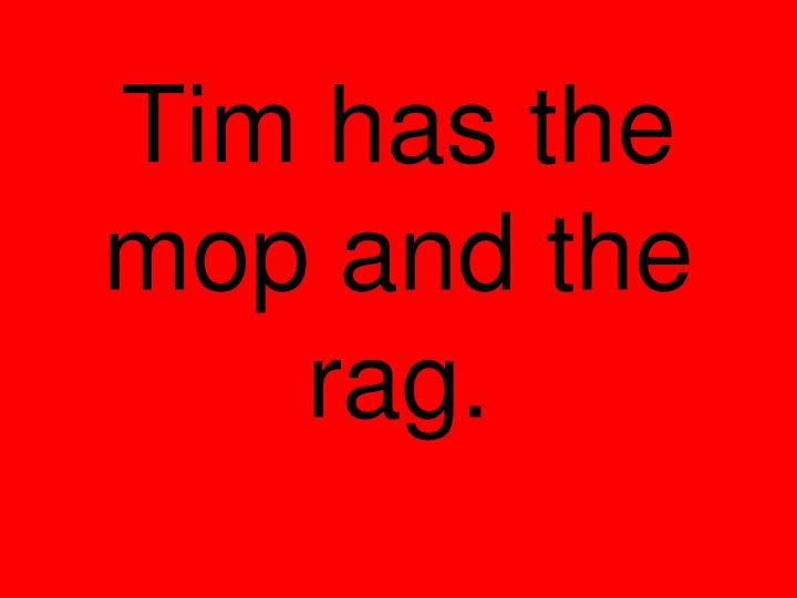 Tim has the mop and the rag.