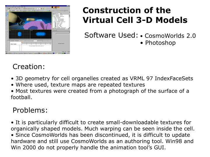 Construction of the Virtual Cell 3-D Models