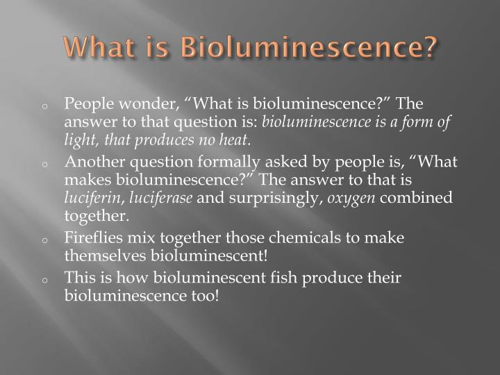 What is bioluminescence