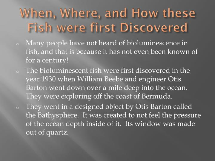 When, Where, and How these Fish were first Discovered