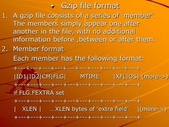Gzip file format