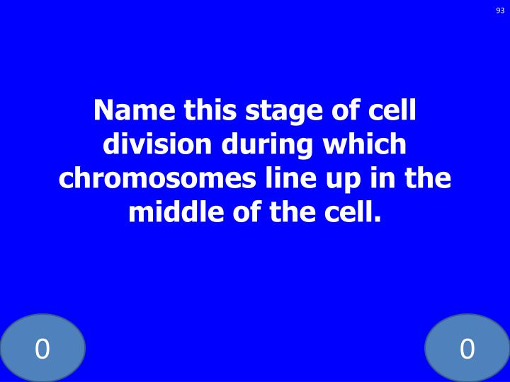 Name this stage of cell division during which chromosomes line up in the middle of the cell.