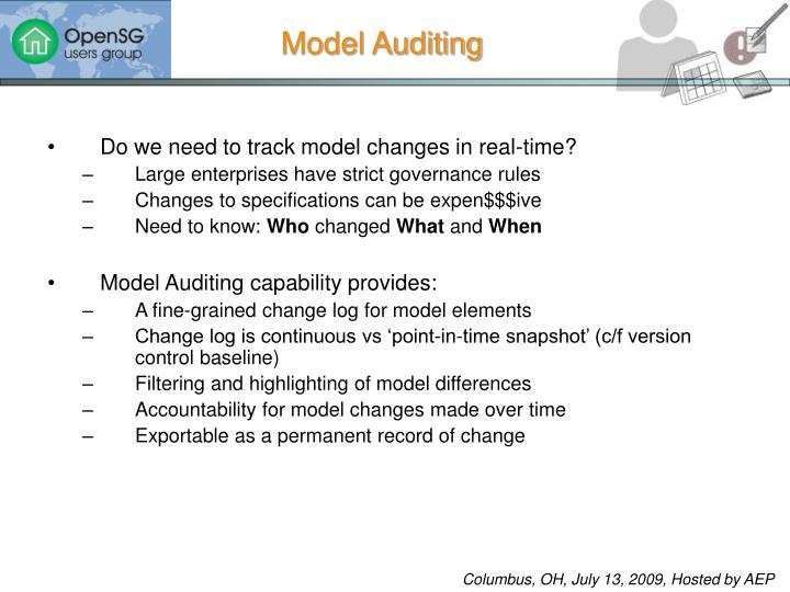 Model Auditing