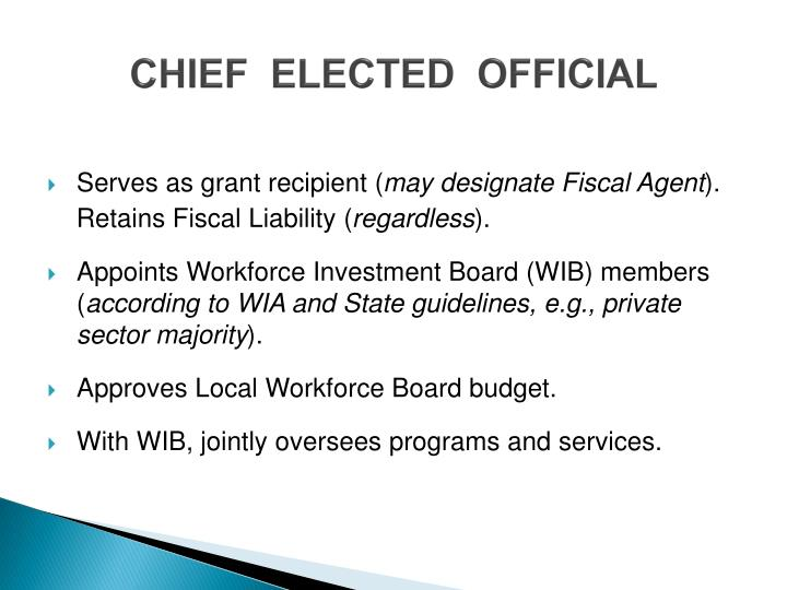 CHIEF  ELECTED  OFFICIAL